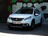 Peugeot_2008_facelift_023_Mini